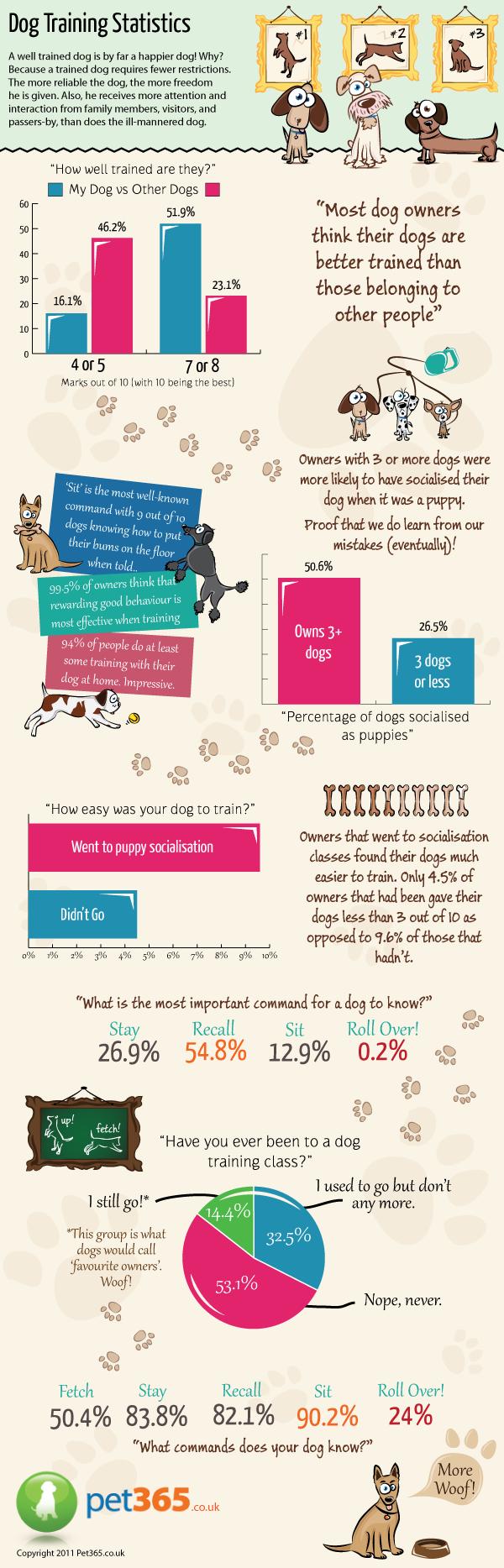 dog_training_infographic